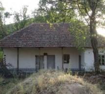 Порекло презимена, село Вина (Лесковац)