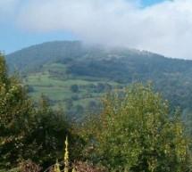 Poreklo prezimena, selo Vučadelce (Surdulica)