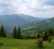 Rodovi slovenskog i germanskog porekla u Crnoj Gori