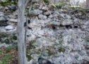 Средњовековни град Борач