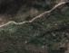 Бањкани у Затријепчу
