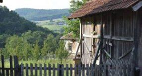 Порекло презимена, село Злот (Бор)