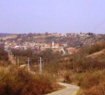 Порекло презимена, село Моловин (Шид)